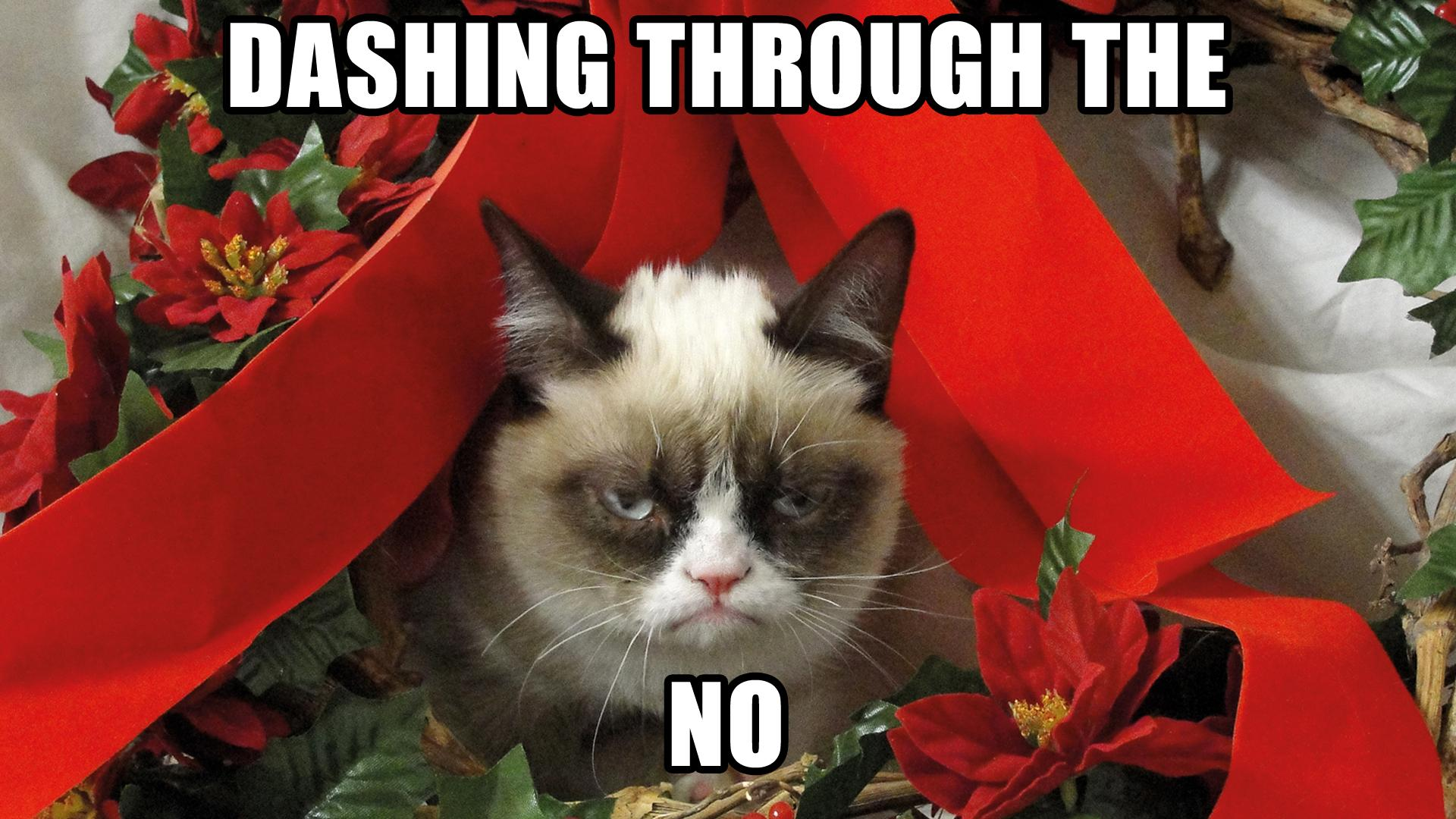 The Feedback Society | » Grumpy Cat's Worst Christmas Ever